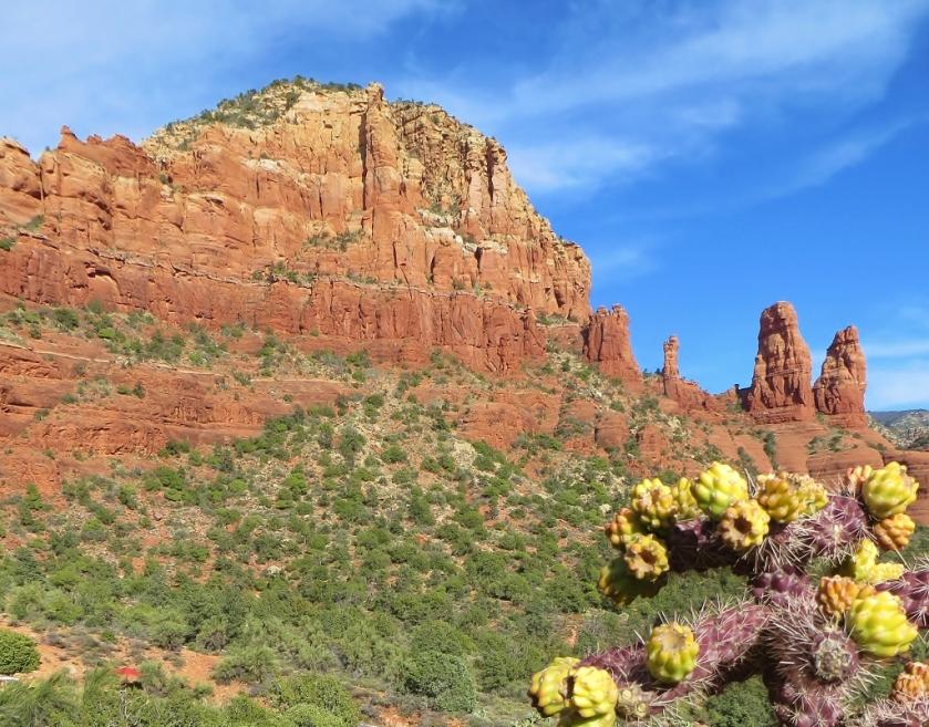 Red Rock, Purple Cactus (1024x801)