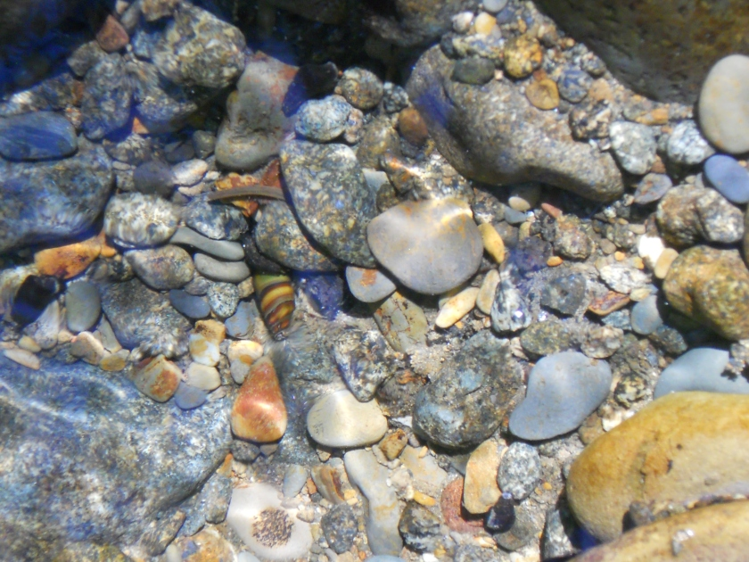Salmon River Rocks3