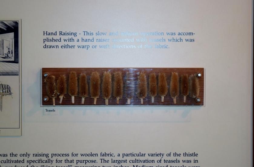 Hand Raising (1024x675)