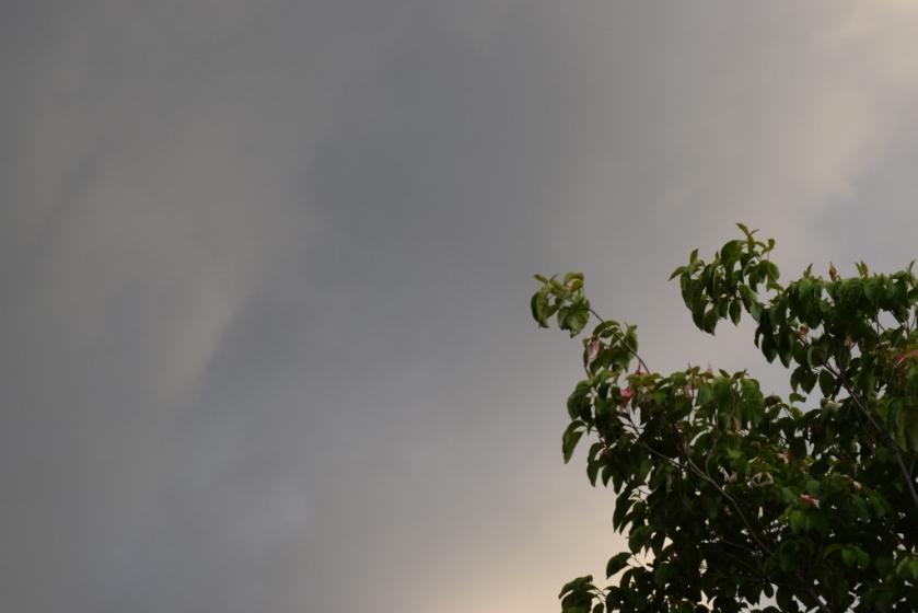 Sky 4 (1024x683)