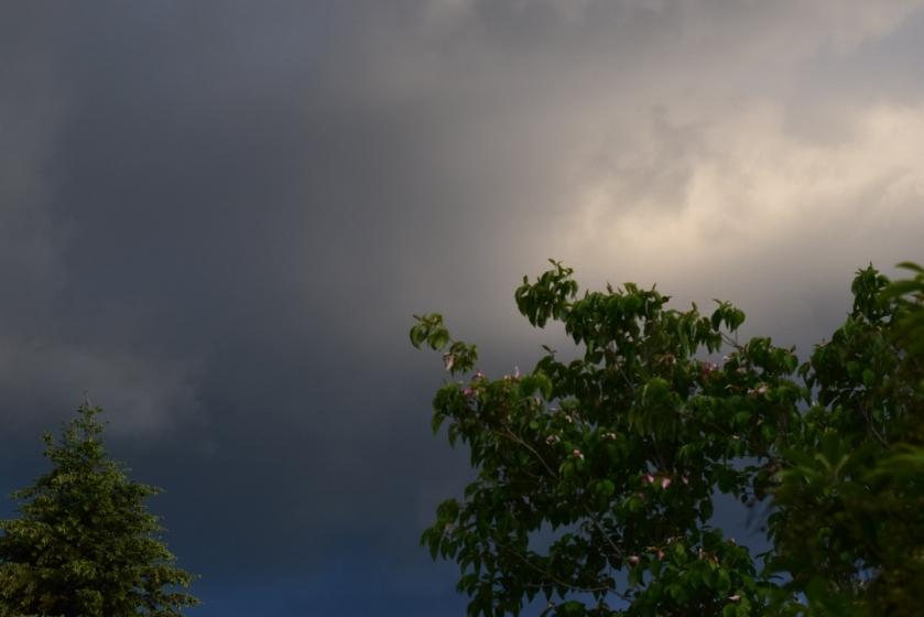 sky8 (1024x683)