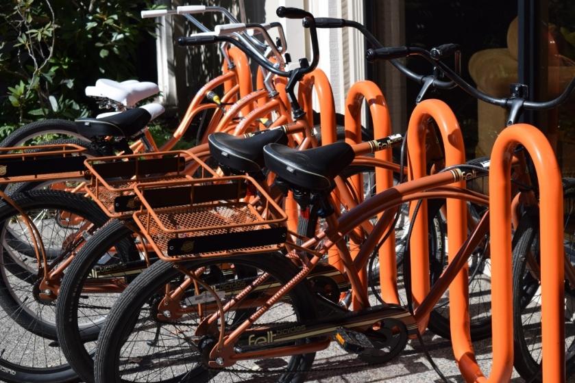 bikes (1024x683)