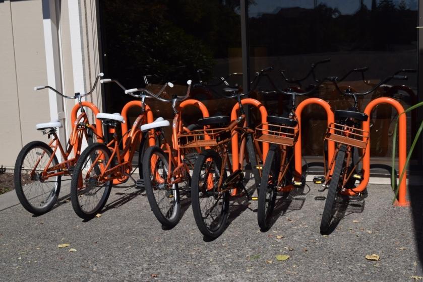 bikes2 (1024x683)