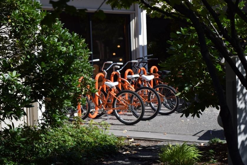 bikes3 (1024x683)