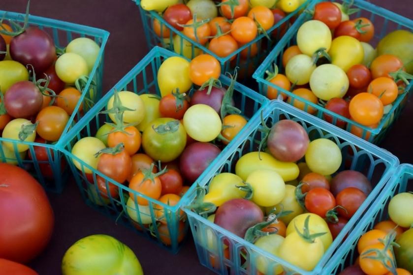 tomatoes2 (1024x683)