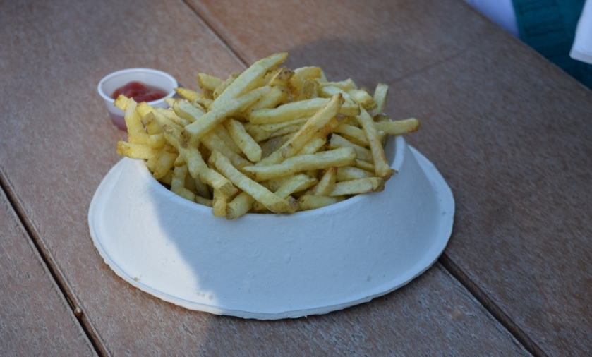 dog-bowl-of-fries-1024x617