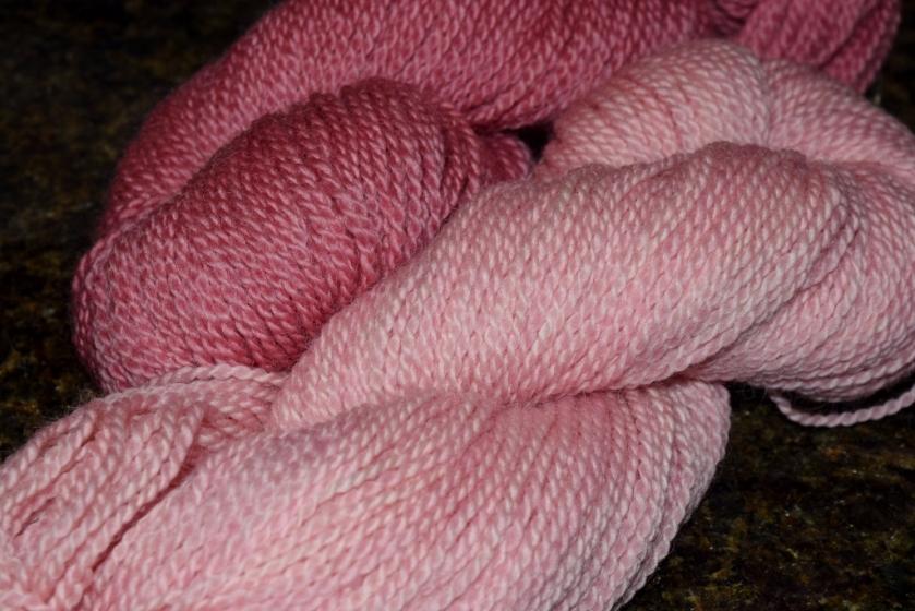 whf-pinks3-1024x683