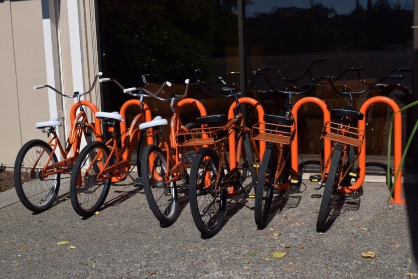 bikes2-1024x683