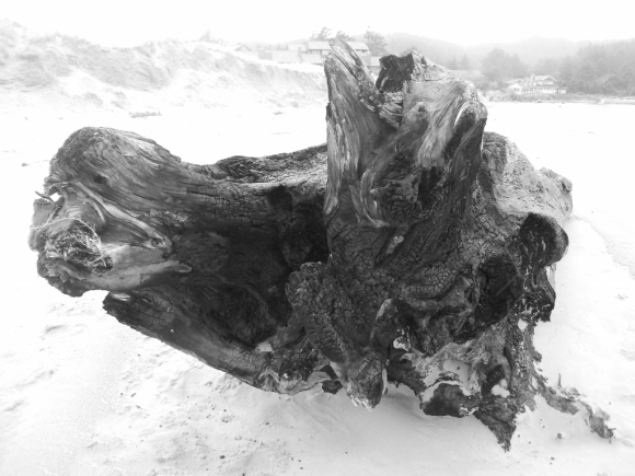 cannon-beach-1024x768