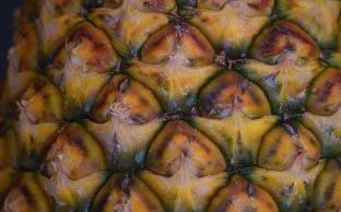 mmm...pineapple